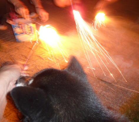 お庭で花火 3