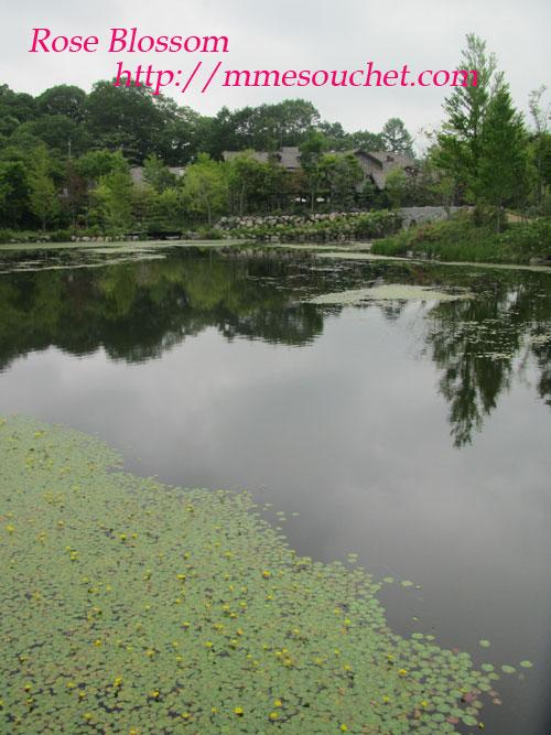 201106198.jpg