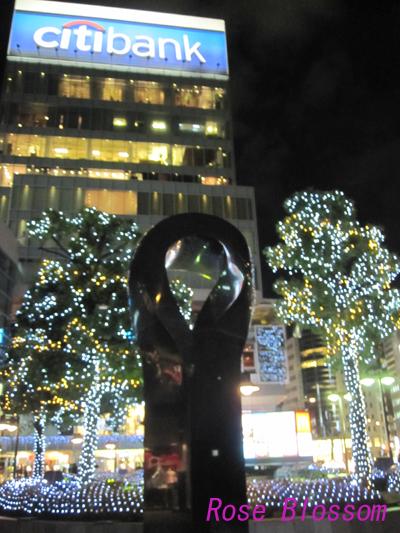 aoyamayakei20100123.jpg