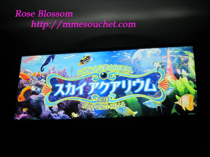 board20110831big.jpg