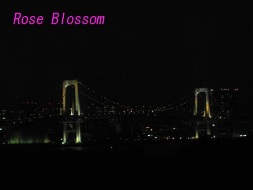 bridgegood20100203.jpg