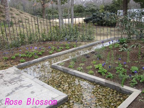 garden201002145.jpg