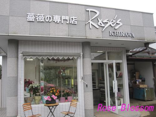 ichikawabaraen20100214.jpg