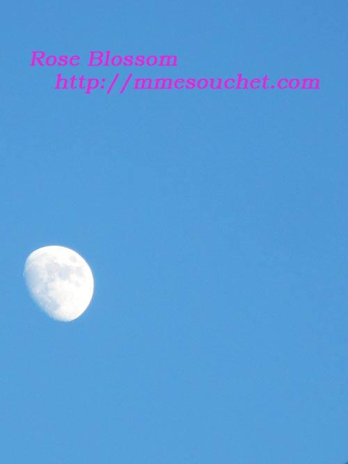 moon20110711.jpg