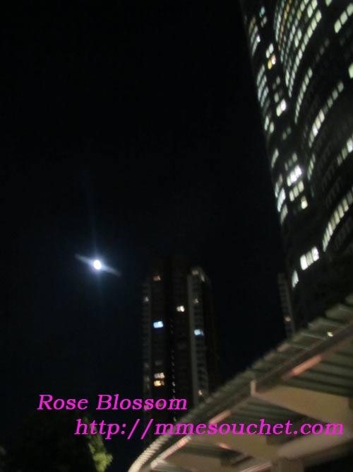 moon20110712.jpg