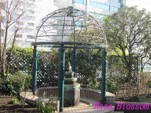 rosegarden201002091.jpg