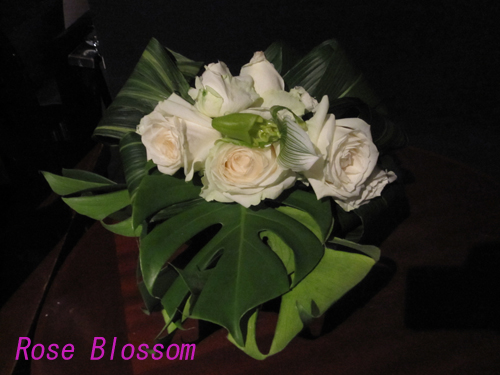 roselounge0117.jpg