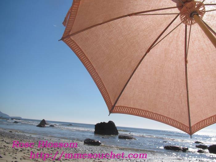 sea201107101.jpg
