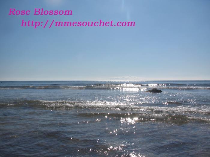 sea201107103.jpg