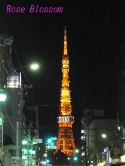 tokyotower0116.jpg