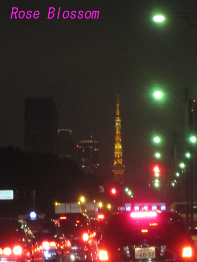 tokyotower20100213.jpg