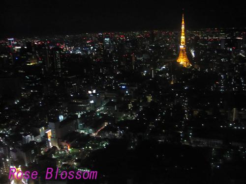 tokyotowerhiruz0116.jpg