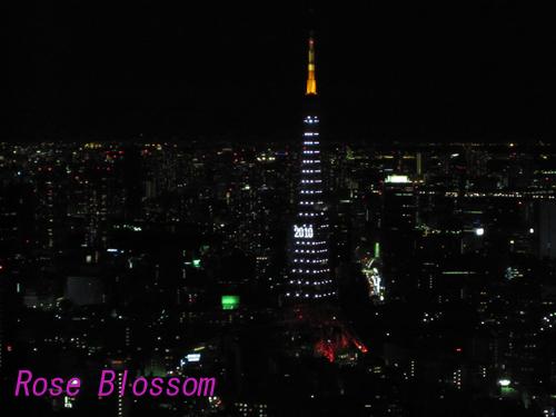 tower0117.jpg