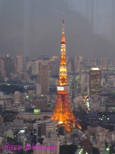 tower160115.jpg