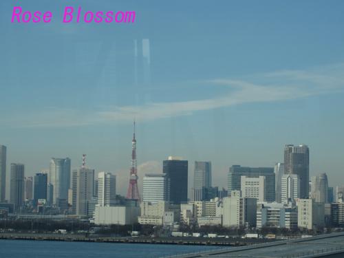 tower20100204.jpg