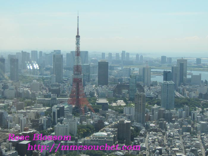 tower20110711.jpg