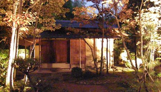 甲子園会館ライトアップ2009-3