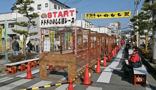 第7回いのしし祭 in 丹波篠山(2)-2