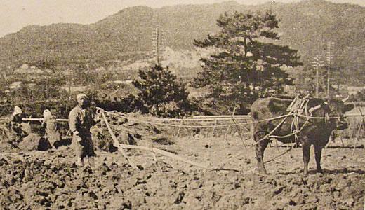 六甲山と芦屋の歴史2010-3