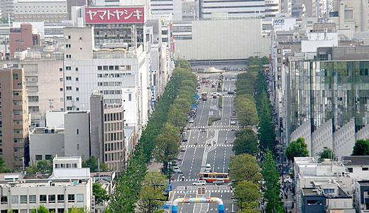 姫路城 大天守平成の大修理中(2)-2