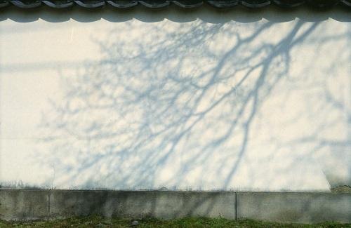 20111119006.jpg