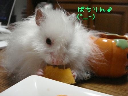 ぱちりん♪(^_-)