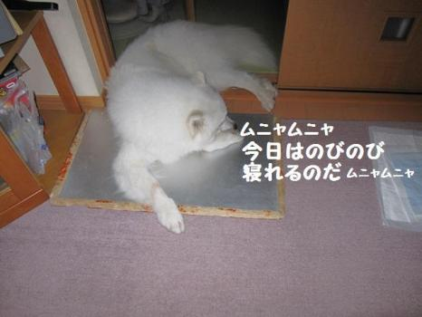 2009 11 01 07