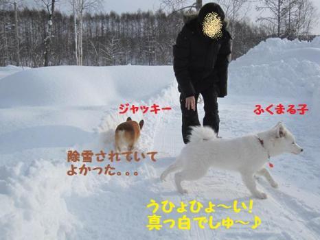 2010 1 3 run1