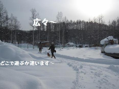 2010 1 3 run2