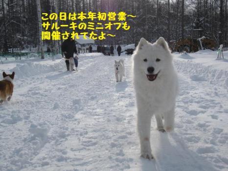 2010 1 3 run8