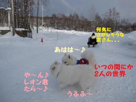 2010 1 3 run23