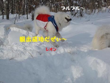2010 1 3 snow3