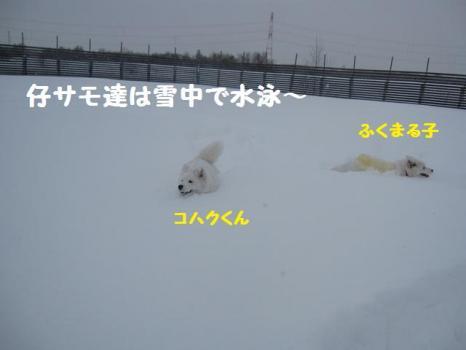 2010 1 17 ofu3