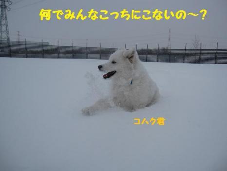 2010 1 17 ofu4