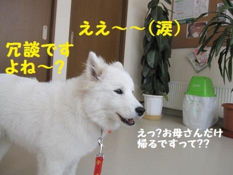 2010 2 3 fuku4
