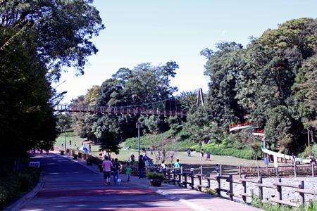 坂田ヶ池1
