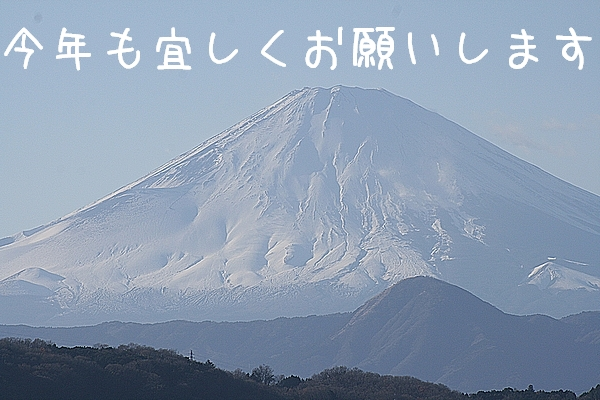 2010117