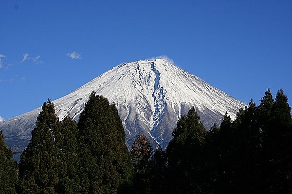 2010151