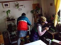 2012_0211三日月豆0007