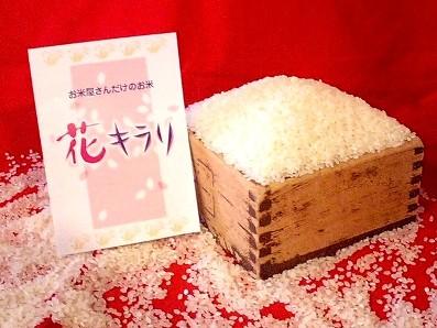 赤坂離宮使用の花キラリ 川越 KOME山田屋