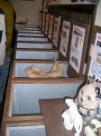 片山米店2