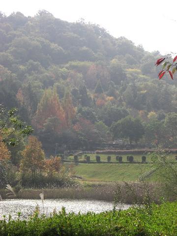 鏡山公園101114