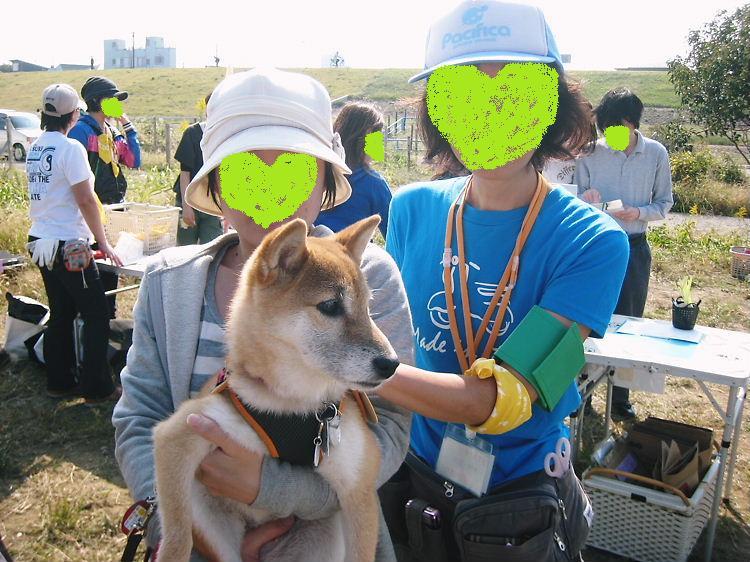 koumeinuoyakai3.jpg