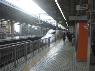 110201d.jpg