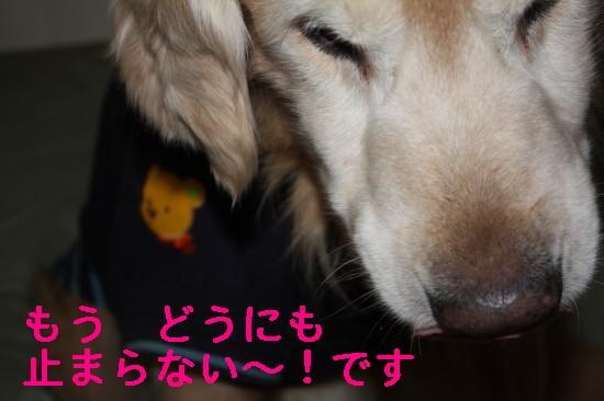 bu-83590001.jpg