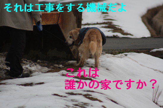 bu-83860001.jpg