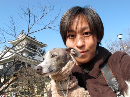 イタグレ小太郎と浜松城