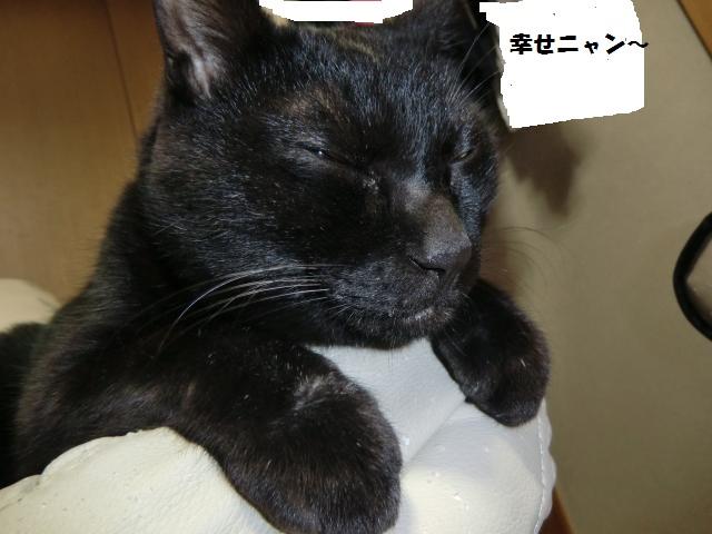 縺ュ縺難シ狙convert_20120704205450