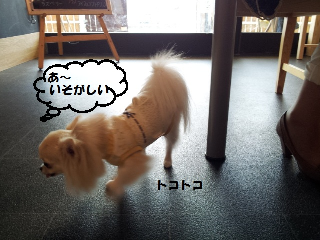 20120929_122605.jpg