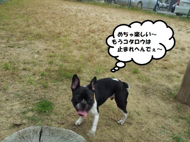 20120929_133842.jpg